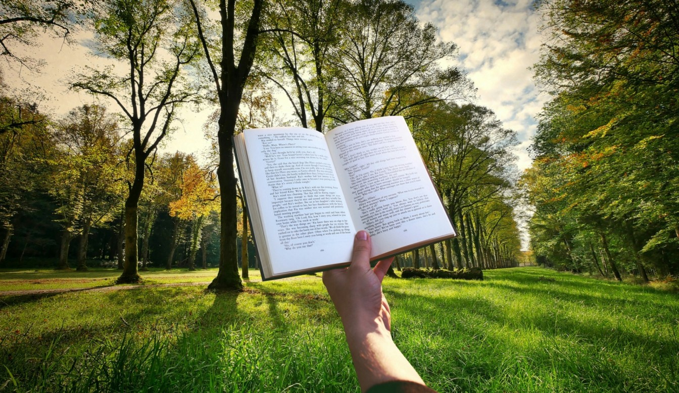 Imagen de referencia de Literatura infantil y juvenil en Libro al Viento