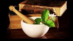 Imagen de referencia de PLANTAS MEDICINALES