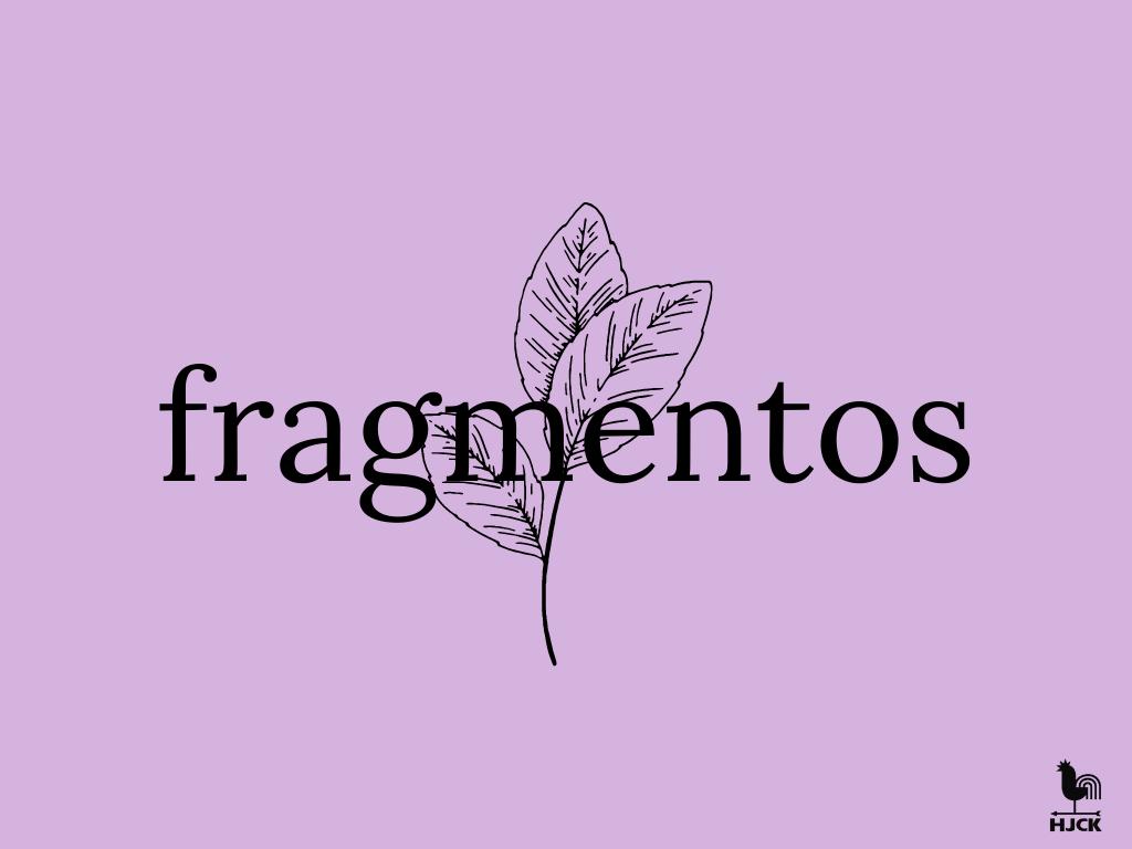 Imagen de referencia HJCK - Fragmentos