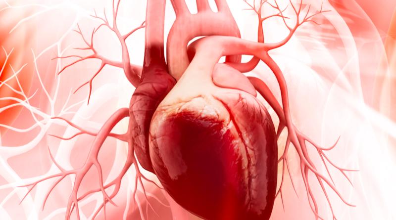 Imagen de referencia Cardiología
