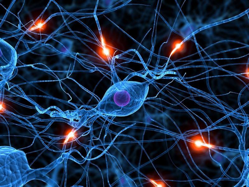 Imagen de referencia Neurología